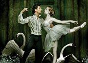 Barcelona Ballet 《Lago de los cisnes》