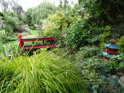 Famous Local Artists' Garden Open for Charity