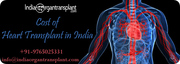 Heart transplant surgery: A solution to massive heart failure