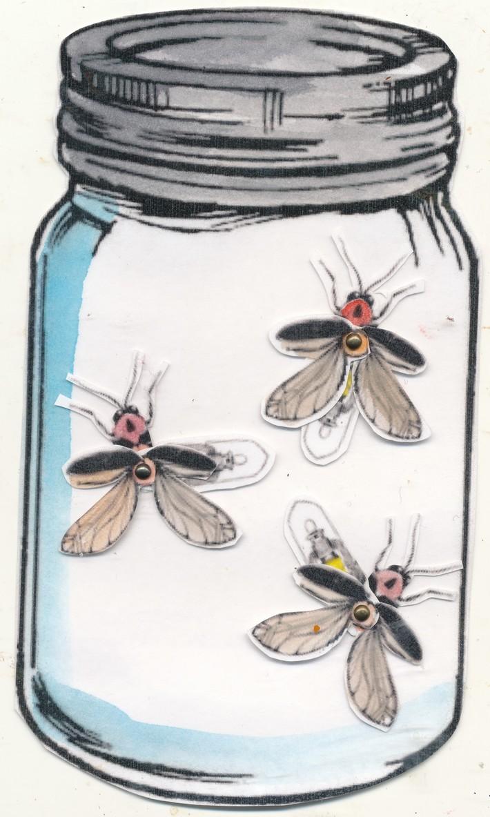 K Barnett Fireflies