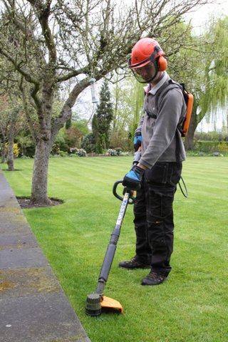 Using the Pellenc Excelion strimmer