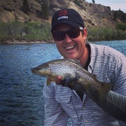 2014 - Craig, Montana - Brown Trout