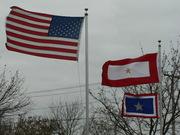 GSSF Car Flag and Flag Pole 077