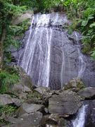 Yunque Rainforest