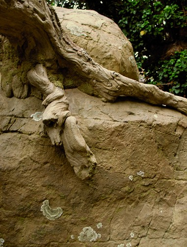 Sandstone w tree-GA-KC-PD1