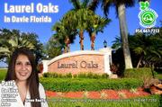Laurel Oaks Davie Homes For Sale