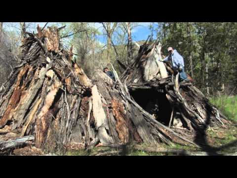 Wilderness Survival Shelters: Stay Alive - and Maybe Comfortable!