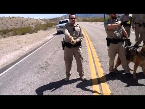 Ranch Riot!! Bundy Ranch Protesters Tasered by Federal Agents and Attacked by K9's.