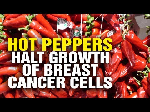 Compound in hot peppers found to halt growth of breast cancer cells