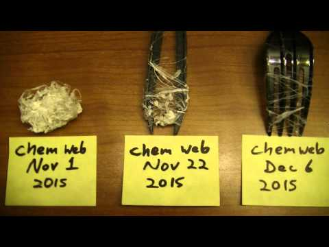 Chemwebs Are Not Spider Webs, SCIENTIFIC PROOF, 1 24 2016