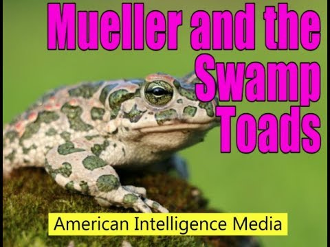 Mueller and the Swamp Toads