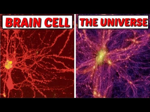 Multidimensional Universe Discovered In our Brains: As Above so Below