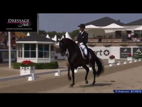 Daniel Bachmann Anderson And Blu Hors Zack Winning Freestyle 85%