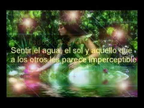 El Amor está en tí-The Memory of Trees, Enya