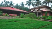 Yoga et soins ayurvédiques, Inde du sud, avril 2020