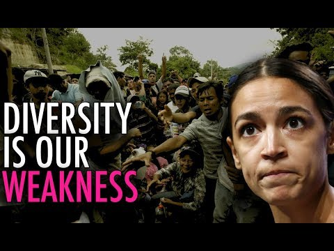 NY Times ADMITS Diversity Makes You POORER and Less Safe