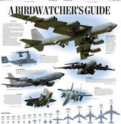SKYFEST - A BIRDWATCHER'S GUIDE