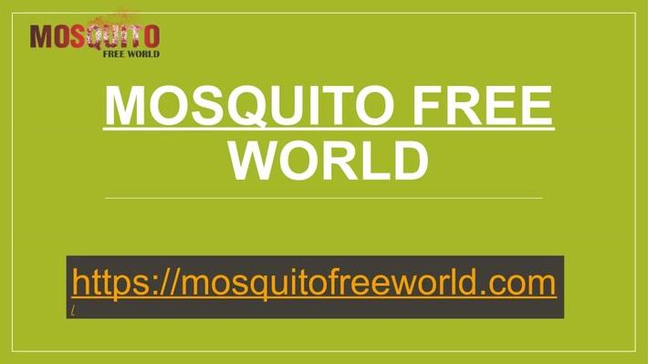 Mosquito Free World