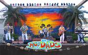 The Hodads - Beach Boys Tribute