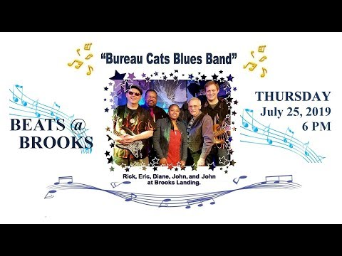 2019-07-25 Beats @ Brooks - The Bureau Cats Blues Band
