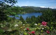 Séjour ressourcement dans les Pyrénées, sources chaudes et air pur