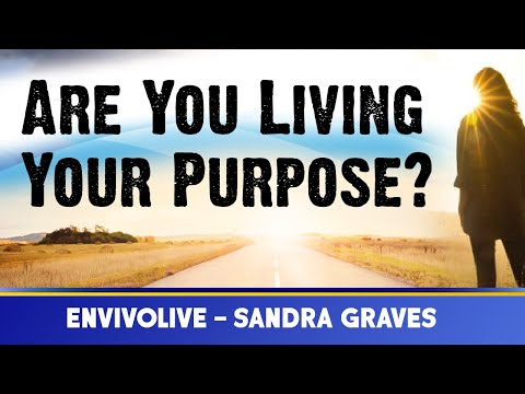 Are You Living Your PURPOSE? Sandra Graves & EnvivoLIVE