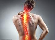 Pilates und starker Rücken