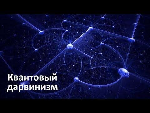 Квантовый дарвинизм | Новые эксперименты квантовой декогеренции фотонов