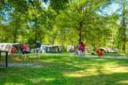 Natuurcamping Drenthe