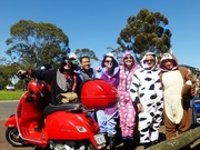 A Onsie Picnic Ride - Geelong ride Cancelled