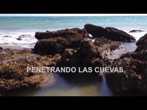 ENSENADA DE AGUA Y SAL, Poema