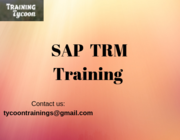 SAP TRM Training | SAP Treasury and Risk Management Online Training