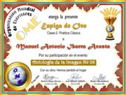 MANUEL ANTONIO IBARRA ACOSTA