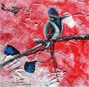 paradisebird-ami