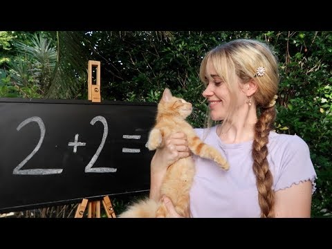 A delightful proof that 2+2=4
