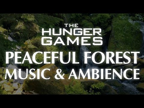 Hunger Games Music & Ambience | Forests of District 12