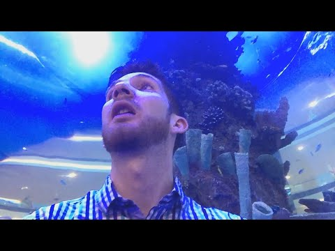 HUGE Mall Aquarium!