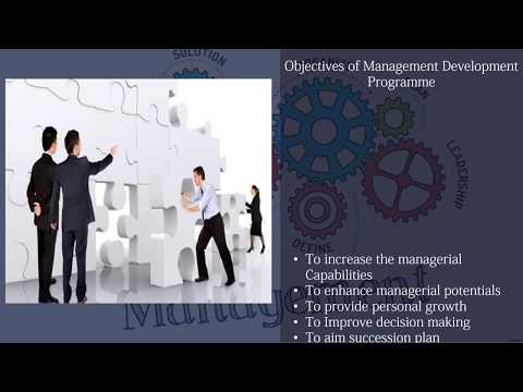 Crucial Traits for Highly Effective Management Development Programmer