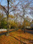 Του Φθινοπώρου εικόνες