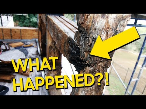 Matt Risinger: Learn from MY FAILURE - A Building Science Lesson