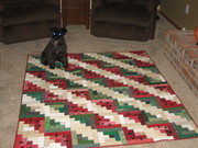 Lucy Holding Down Watermelon Quilt