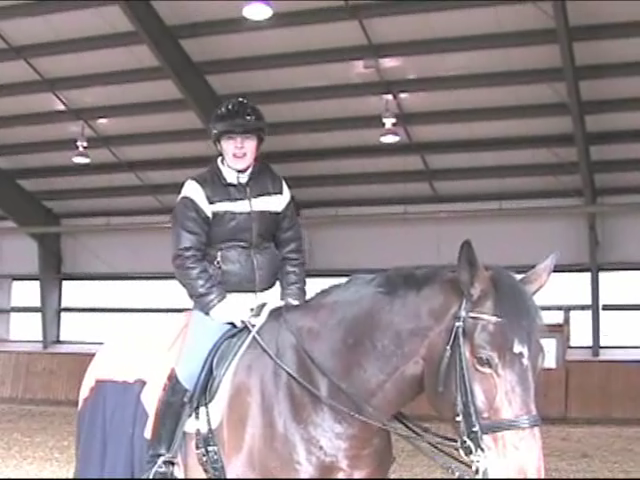 Belinda Trussell: Horse Pre-Purchase Questions
