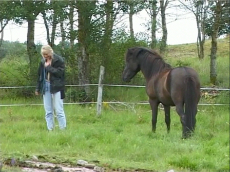 Horses with Problems 03 - Gjafar part 2