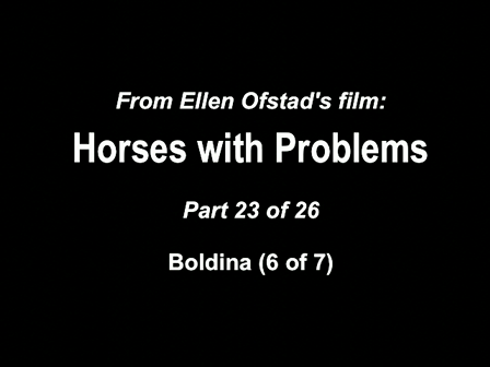 23-26 Horses with Problems - Boldina 6-7