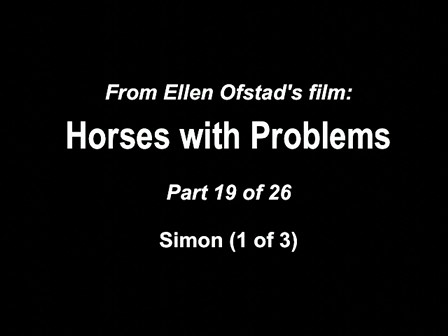19-26 Horses with Problems - Simon 1-3