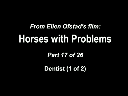 17-26 Horses with Problems - Equine Dentist 1-2