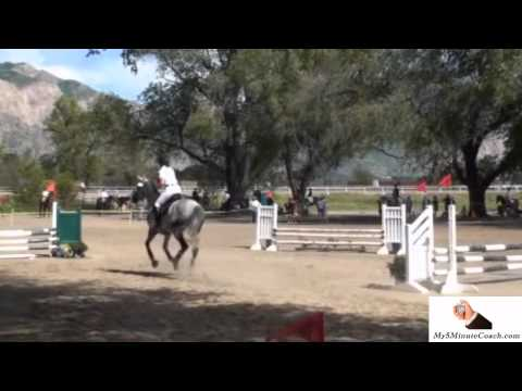 Show Jumping with My5MinuteCoach