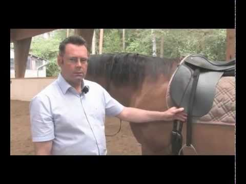 """DVD """"Does my saddle really fit?! by Desmond O´Brien"""