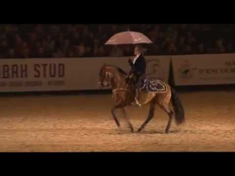 "Gene Kelly on Horseback - ""Singing in the Rain"""