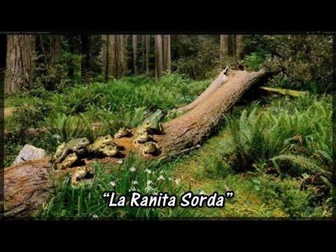 """La Ranita Sorda...""""Cuentos Espirituales"""""""